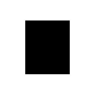 logo-leo-op-t-werk